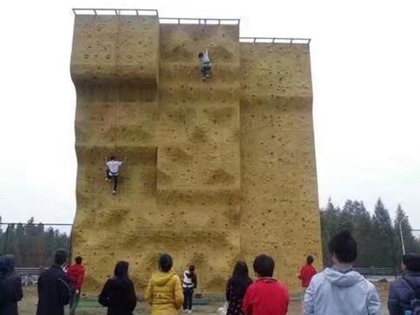 攀岩墙 (9)